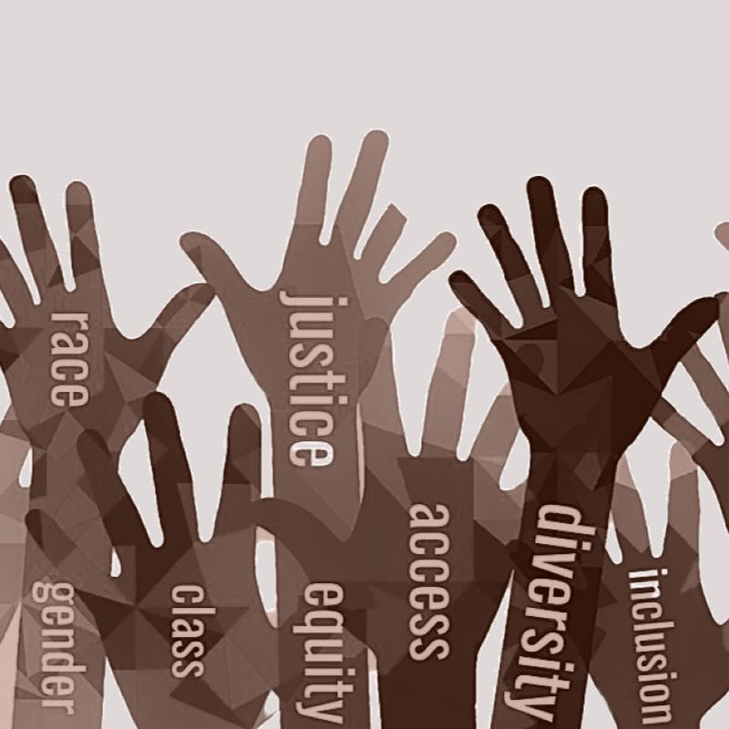 48in48 social justice logo cartoon hands raised with the words justice diversity race gender class equity access and inclusion